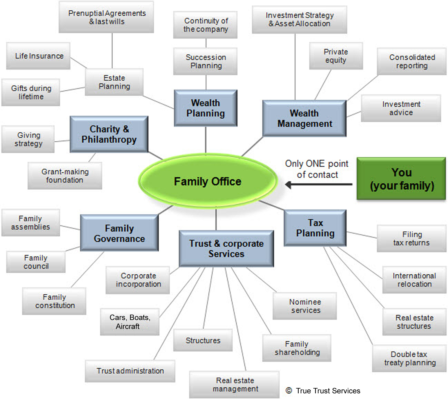The True Trust Family Office Services